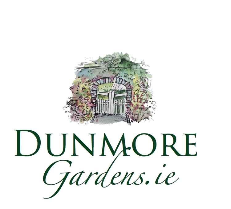 dunmore gardens web logoa dn branding design