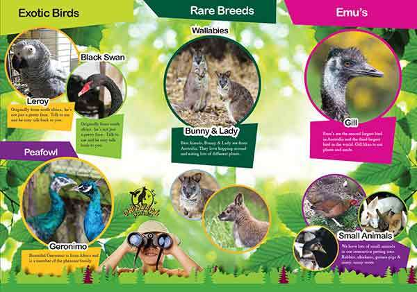 wallaby woods leaflet designs